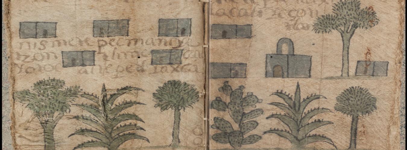 Codex Cempoallan, Newberry Ayer MS 1472 Sheet 6